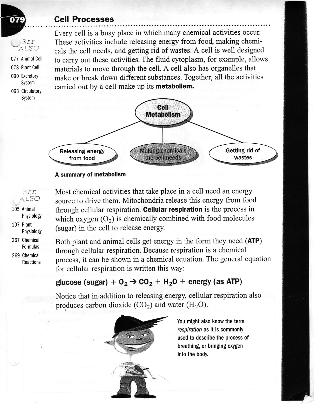 From Molecules to Organisms Structures and Processes HSLS1 – Molecules of Life Worksheet